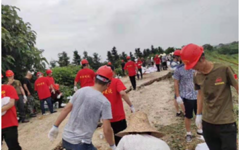 抗洪救灾-社会组织在行动(一)我们在行动——社会组织参与抗洪救灾