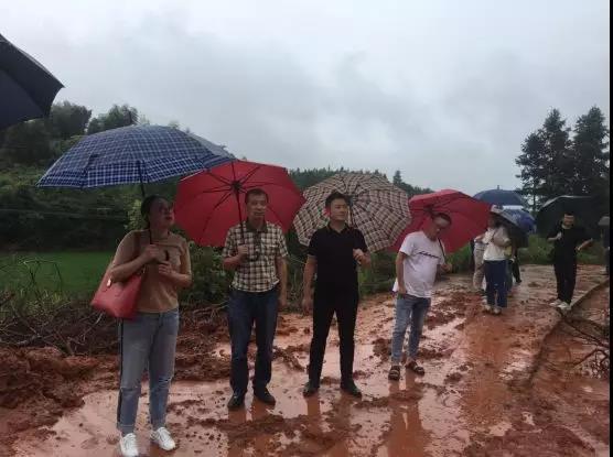 洪水无情,人间有爱 | 抗洪赈灾,株洲互联网协会在行动
