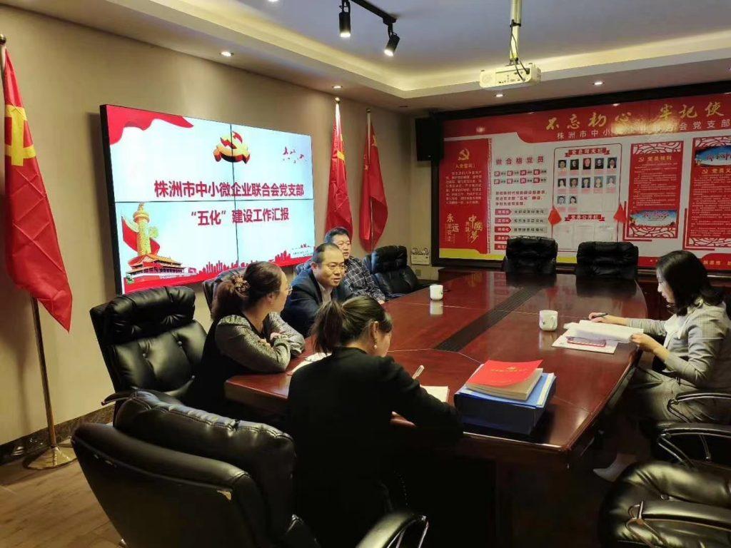 """社会组织综合党委开展支部""""五化""""建设验收工作"""